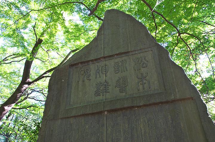 matsumoto02