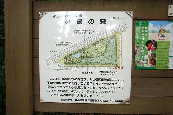 nishien06